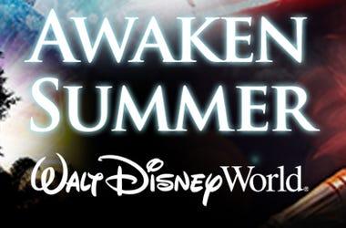 Awaken your summer at Walt Disney World