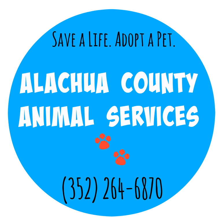 Alachua County Animal Service