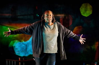 Until The Flood By Dael Orlandersmith