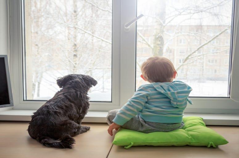 Boy_and_Dog