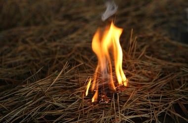 Small Grass Fire