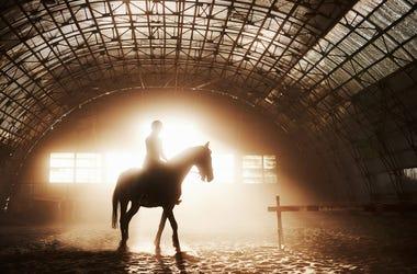 Guy Riding A Horse