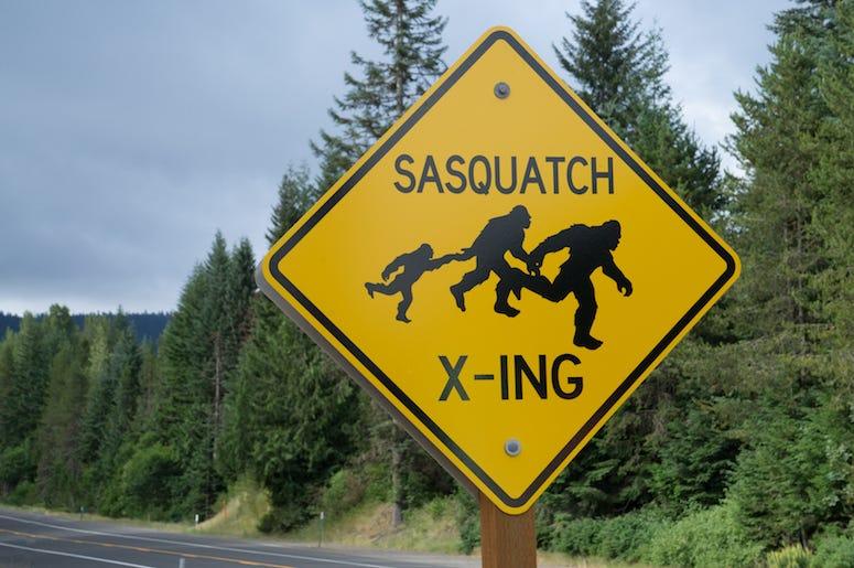 Sasquatch, Bigfoot, Sasquatch Crossing, Road Sign, Highway, Oregon, Wilderness