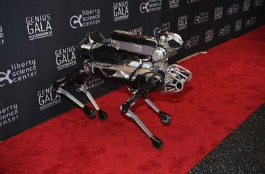 Robot_Dog