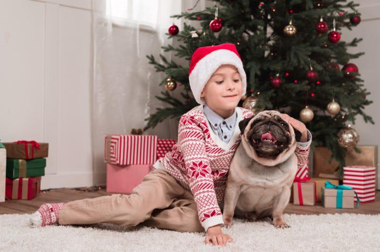Boy petting his dog