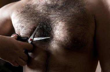 chest hair