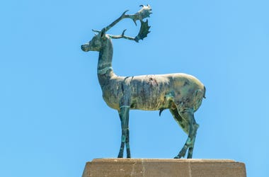 Illinois,Students,University,Football,Players,Apartment,Park,Statue,Sculpture,Stolen,Arrest,Deer,ALT 103.7
