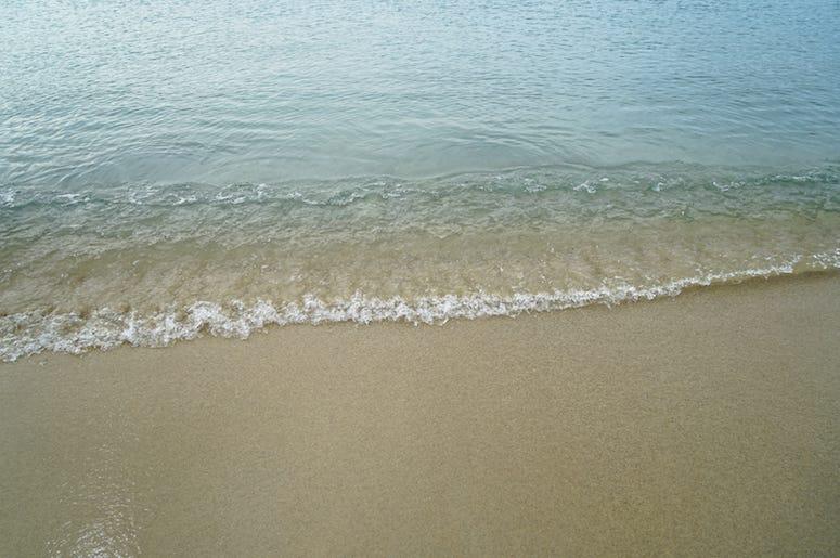 Beach, Shore, Water