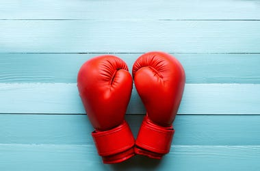 Red Boxing Gloves, Blue Table