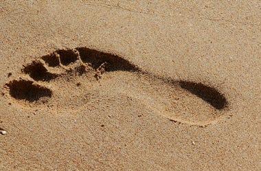 Foot, Footprint, Feet, Sand, Beach