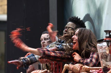 Zombies, Brains,