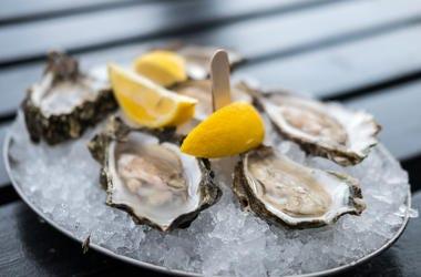 Oysters, Lemons, Ice, Bucket