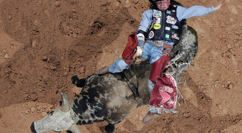 """Scott Schiffner of Canada rides """"Pudd"""" during the Professional Bull Riders World Finals"""