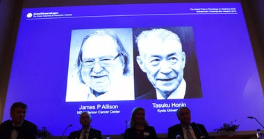 The Nobel prize laureate in medicine or physiology 2018 is shown on the screen James P Allison, left, and Tasuku Honjo, during the presentation at the Karolinska Institute in Stockholm, Sweden, Monday Oct. 1, 2018.