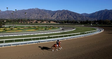 An exercise rider takes a horse for a workout at Santa Anita Park.