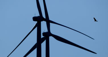In this March 29, 2020, file photo, a bird flies among wind turbines near King City, Mo.