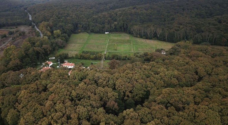 An aerial view of the Belgrade Forest in Istanbul, Friday, Oct. 19, 2018.