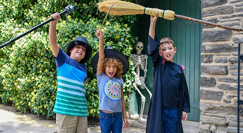Wizard and Witches Festival in Chestnut Hill.