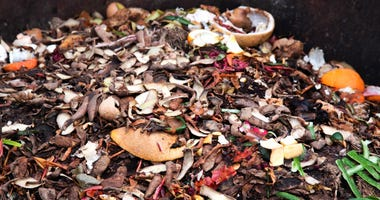 Composting pile of fruit and vegetables.