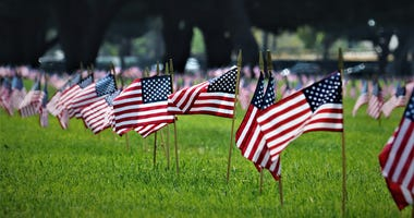 American flags at graveyard