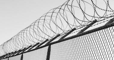 razor wire on perimeter fence