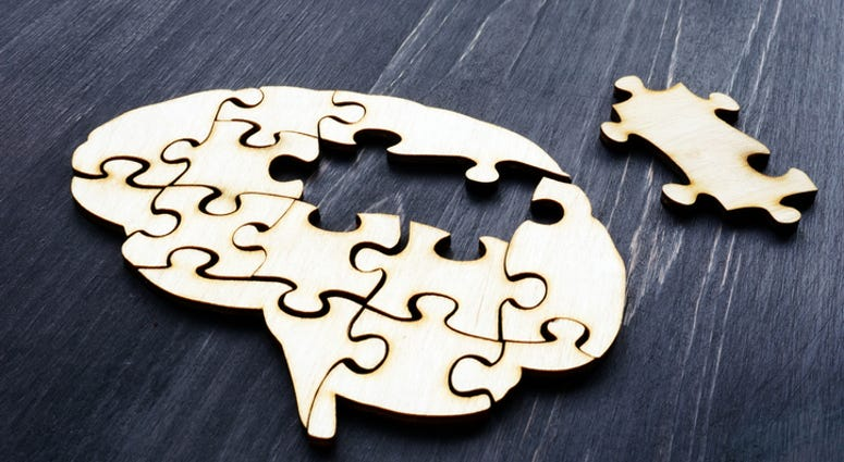 Brain from wooden puzzle