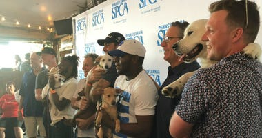 Members of the Phillies taking part in Puppapalooza at Morgan's Pier