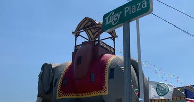 Margate's iconic Lucy the Elephant now resides on Lucy Plaza, as the city has renamed the south beach block of Decatur Avenue in her honor.