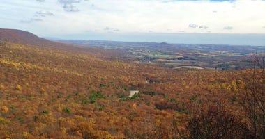 Fall foliage seen in Hawk Mountain Sanctuary, Albany Township, Berks County.