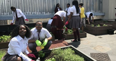 The Sofitel hosted about a dozen ninth-graders in its rooftop garden — 15 floors up — to learn about planting and sustainability.