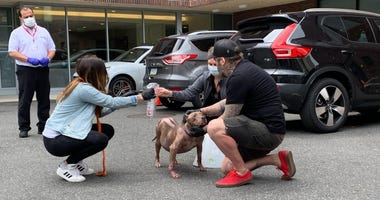 Jessica and Marvin Graaf of Philly Bully Team reunited 15-year-old Gucci with the Chamlee family from Tennessee.