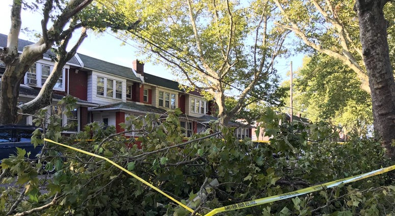 Damage from Wednesday night storms at Saul Street and Cheltenham Ave in Frankford.