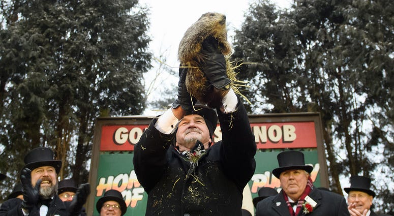 Punxsutawney Phil did not see his shadow predicting an early spring during the 133rd annual Groundhog Day festivities on February 2, 2019 in Punxsutawney, Pennsylvania.