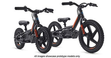 Harley-Davidson is trying to attract a new generation of riders at a very young age. The iconic motorcycle company announced Tuesday that it was buying StaCyc, which makes two-wheel electric bikes for kids.