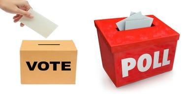 Voter Poll