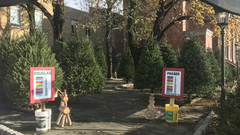 The Christmas Tree Stand at 6th and Spring Garden streets in Philadelphia.
