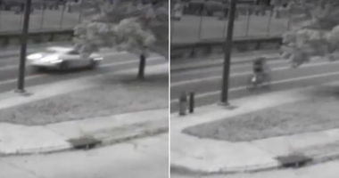 Strawberry Mansion hit-and-run