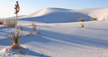 White Sands is the world largest gypsum dune field.