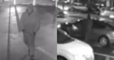 Police seek machete-wielding man