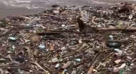 Trash floats down the Schuylkill River after recent heavy rains in the Philadelphia area.