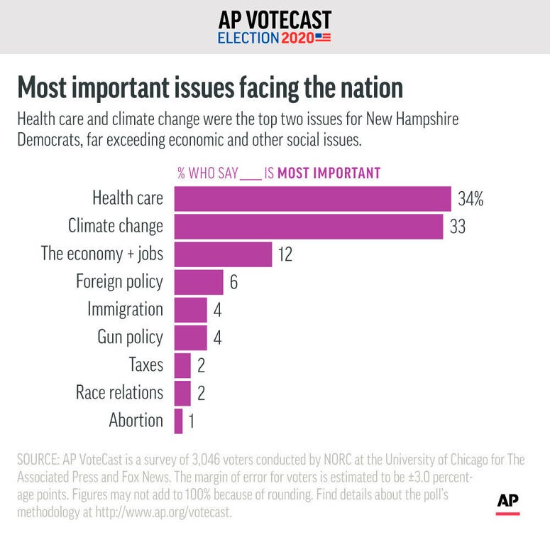 New Hampshire's Democratic voters identify the issue they see as most important in the country today, according to AP VoteCast.