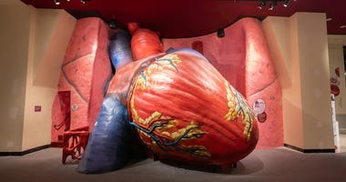Giant Heart at The Franklin Institute