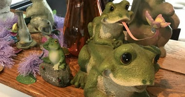 Passover Feast Frogs