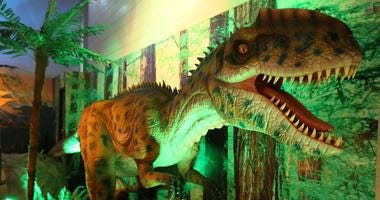 Dinosaur exhibit at The Academy of Natural Sciences