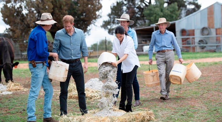 10/17/2018 - The Duke and Duchess of Sussex help feed the farm animals as they visit a local farming family, the Woodleys in Dubbo, on the second day of the Royal couple's visit to Australia.