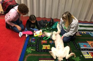 Kids practice reading to dogs at the Please Touch Museum.