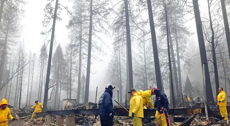 After a brief delay to let a downpour pass, volunteers resume their search for human remains at a mobile home park in Paradise, Calif., Friday, Nov. 23, 2018.