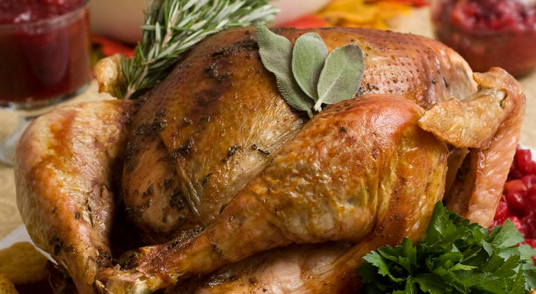 Thanksgiving turkey in Concord, N.H.