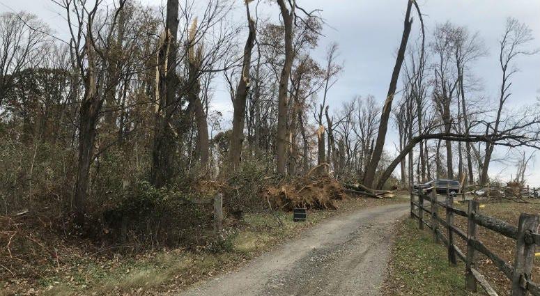 Photo of the aftermath of a tornado at Clonmel Farm.