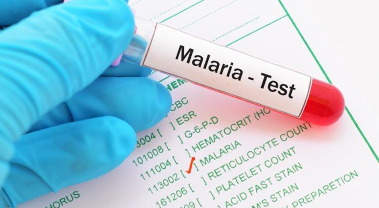 Malaria test results.